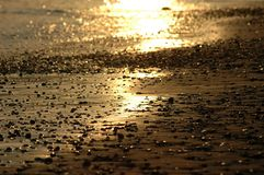 放光含沙岸日落下 免版税库存照片
