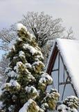 放光的村庄橡木雪冬天 库存图片