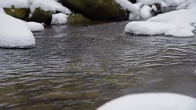 放出与雪和冰在冬天森林 股票录像