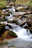 小河在喜马拉雅山 图库摄影
