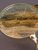 放大器腐烂使用被查看的木头 图库摄影