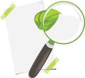 放大镜、纸在白色隔绝的板料和叶子 免版税库存照片