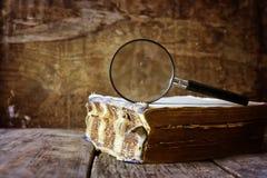 放大镜和旧书 库存图片