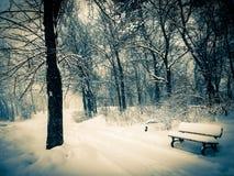 放弃在冬天!! 免版税库存照片