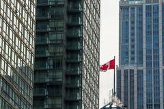 放弃在天空中的加拿大的旗子围拢由高层和摩天大楼在加拿大,多伦多经济首都 库存照片