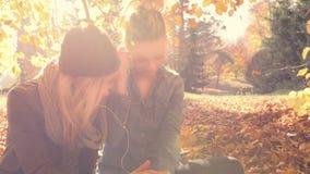 放松与朋友的少妇在公园 股票录像