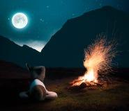 放松入对火阵营的夜 库存图片