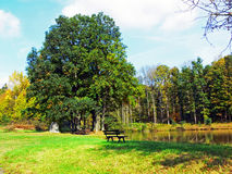 放松公园的安排 图库摄影