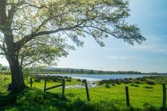 放松和享用的地方 免版税库存照片