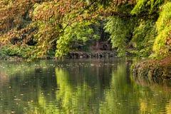 放松和日落在公园 库存图片