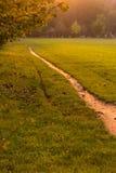 放松和日落在公园 免版税图库摄影