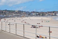 放松和晒日光浴在Bondi海滩的温暖的季节初的人们 免版税图库摄影