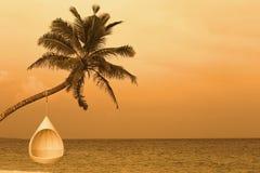 放松在一个热带海岛上 免版税库存照片