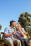放松在公园的夫妇用酒 库存图片