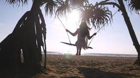 放松在摇摆的泳装和衬衣的年轻愉快的妇女在热带海洋海滩 美丽的女孩坐摇摆和 免版税库存图片