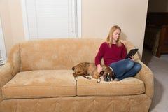 放松在有她的狗和电子设备的长沙发的妇女 免版税图库摄影