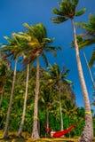 放松在棕榈树之间的一个吊床的妇女在海岛,巴拉望岛,菲律宾上 免版税库存图片