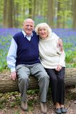 放松在森林里的愉快的长辈夫妇 免版税库存图片