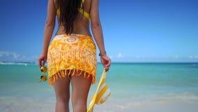 放松在海滩、健康生活方式和自由构想的年轻女人 影视素材