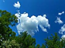 放松在清楚的天空下 库存照片
