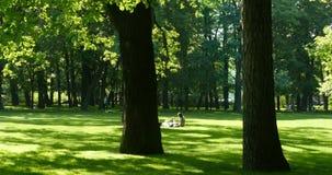 放松在绿色草坪的对青年人 股票录像