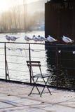 放松在船,友好的战斗栏杆的海鸥  免版税图库摄影