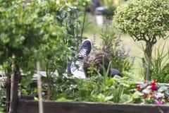 放松在都市庭院里的年轻人 库存图片