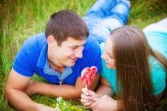 放松在领域的浪漫夫妇 免版税库存图片