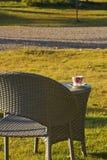 放松扶手椅子的后院 免版税库存照片