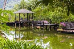 放松的亭子在一个池塘在一个热带庭院里,泰国 免版税库存照片