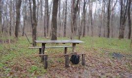 放松的地方在森林里 库存照片