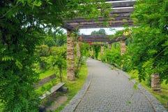 放松的美丽的绿色公园 库存图片