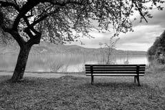 放松的长木凳在岸 观看在阿尔卑斯山用白色峰顶镜子 免版税库存照片