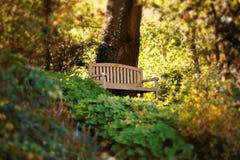 放松长凳华美的公园的安排 免版税库存照片