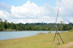 放牧石渣绿色横向沼泽北部ribe路海运 免版税库存照片