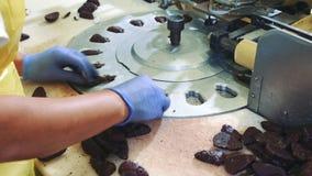 放甜点的庄稼手入包装机 糖果工厂 影视素材