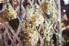 绽放的洋红色九重葛植物在木露台荫径 免版税图库摄影