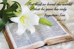 放置在一部古色古香的圣经的百合在复活节早晨 免版税库存图片