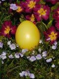 放置在有花的草甸的复活节彩蛋 图库摄影