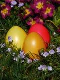 放置在有花的草甸的复活节彩蛋 免版税库存图片
