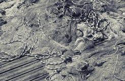 放置在木码头的捕鱼网,黑白 库存照片