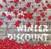 放置在木背景的冬天折扣和红色落的叶子 库存图片