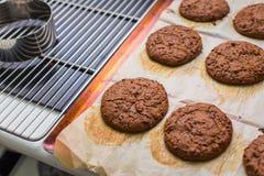 放置在机架的被烘烤的巧克力曲奇饼 库存照片
