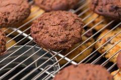 放置在机架的被烘烤的巧克力曲奇饼 库存图片