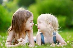 放置在草的两个逗人喜爱的妹 免版税图库摄影