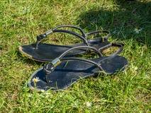 放置在草的凉鞋 库存照片