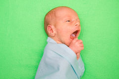 放置在绿色盖子的新出生的婴孩 免版税库存照片