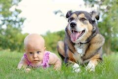 放置外面与宠物德国牧羊犬狗的女婴 库存图片