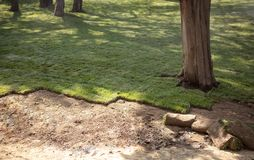放置新的庭院草坪的草皮 库存照片