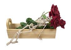 放置玫瑰概要的配件箱木 免版税图库摄影